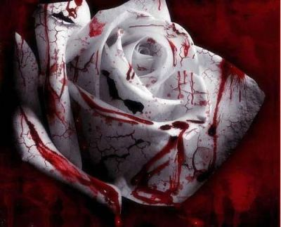 blood_rose
